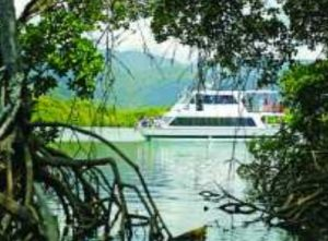 Cairns Harbour Cruises - Stayed