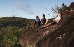 Cooktown Aboriginal Art Tours - Stayed
